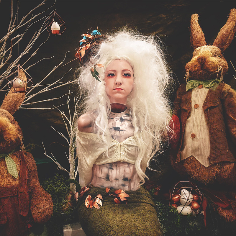Down the Rabbit Hole…